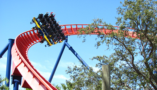 Located in Tampa, Busch Gardens is a great place to visit for a day trip to enjoy thrilling roller coasters.